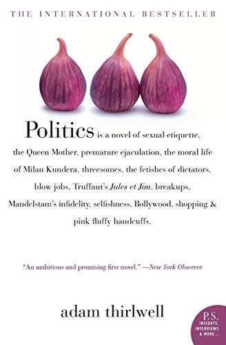 9780007163670: Politics: A Novel