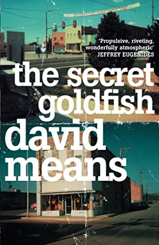 9780007164882: The Secret Goldfish