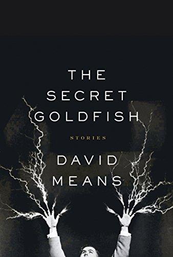9780007164899: The Secret Goldfish