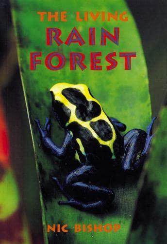 9780007167685: Skyracer Blue - The Living Rainforest: Blue Book