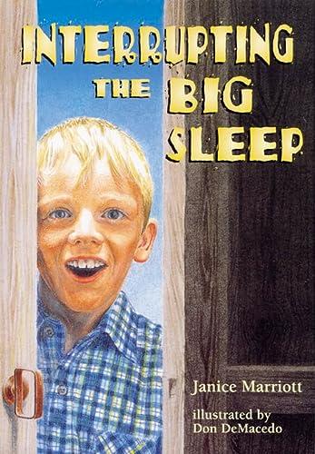 9780007167906: Skyracer Green - Interrupting the Big Sleep: Green Book (Skyracer Purple)