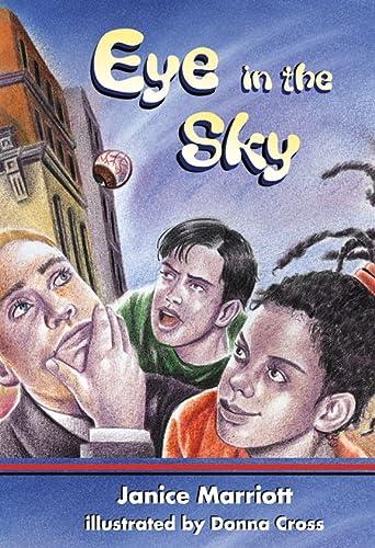 9780007168071: Skyracer Green - Eye in the Sky: Green Book