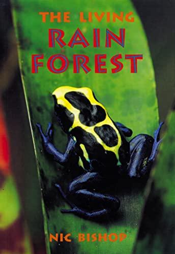9780007168804: Skyracer Blue - The Living Rainforest: Blue Book
