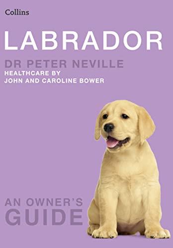 9780007178322: Labrador (Collins Dog Owner's Guides)
