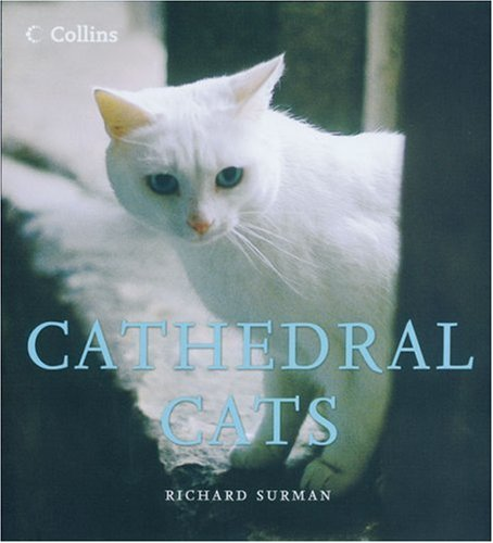 9780007182800: Cathedral Cats