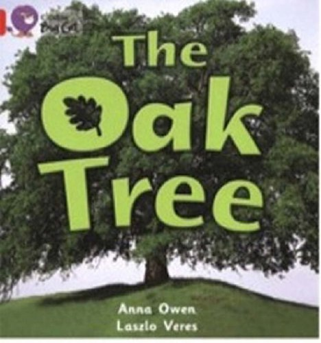 9780007185627: Collins Big Cat - The Oak Tree: Band 02B/Red B