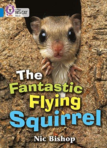 9780007185832: Collins Big Cat - The Fantastic Flying Squirrel: Band 04/Blue