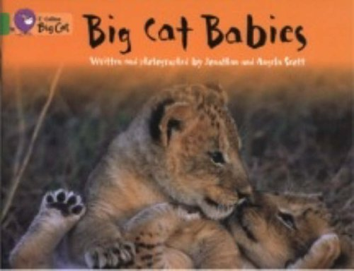 Big Cat Babies: Band 05/Green (Collins Big: Collins Big Cat