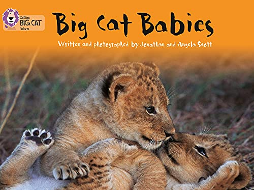 9780007185948: Big Cat Babies (Collins Big Cat)