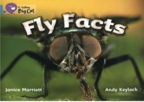 9780007186082: Fly Facts (Collins Big Cat)