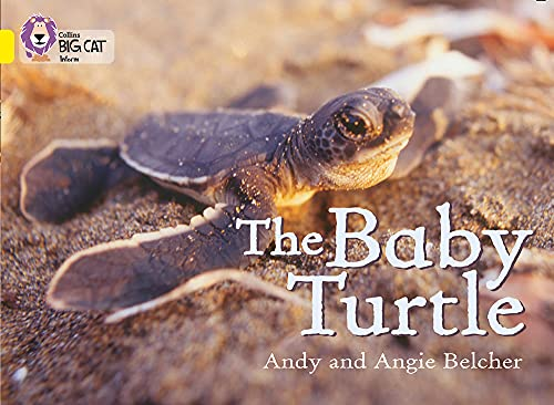 9780007186594: The Baby Turtle (Collins Big Cat)