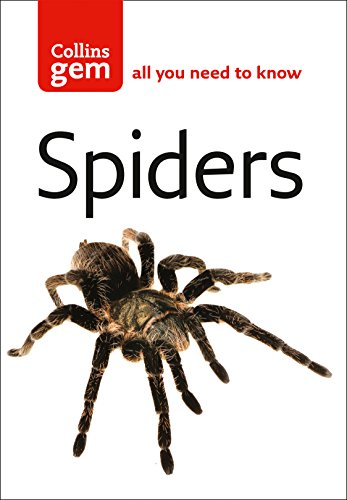 9780007191710: Spiders (Collins Gem)