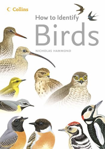 9780007194483: How to Identify Birds