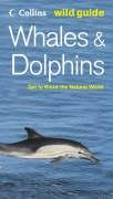 9780007205479: Whales and Dolphins (Collins Wild Guide) (Collins Wild Guide S.)