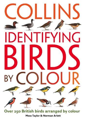 9780007206797: Identifying Birds by Colour
