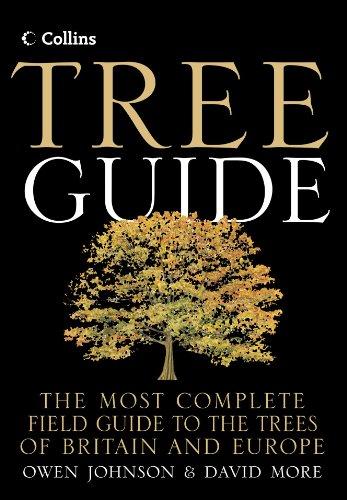 Collins Tree Guide (Paperback): Owen Johnson