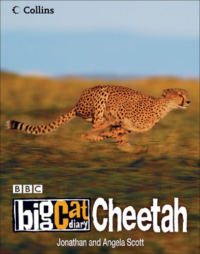 9780007211807: Cheetah (Big Cat Diary)