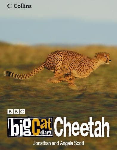 9780007211807: Big Cat Diary: Cheetah