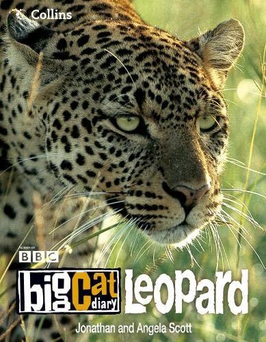 9780007211814: Big Cat Diary: Leopard