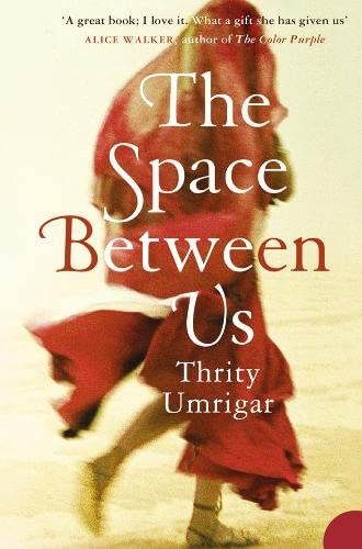9780007212330: The Space Between Us