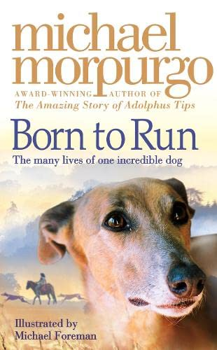 9780007230570: Born to Run