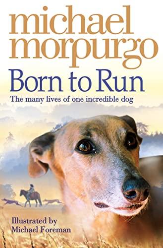 9780007230594: Born to Run