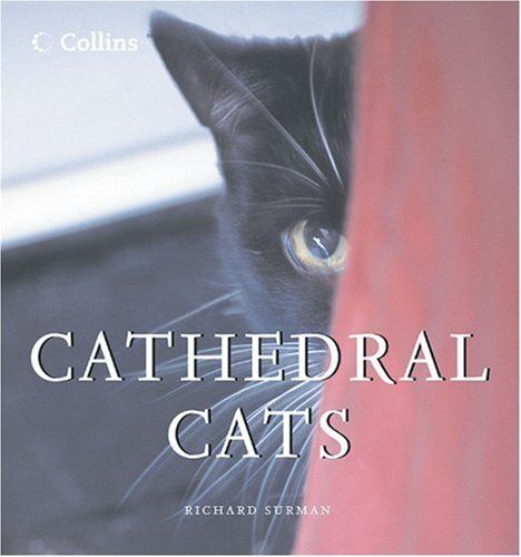 9780007235636: Cathedral Cats
