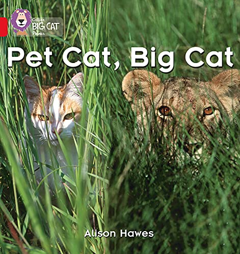 9780007235872: Collins Big Cat Phonics - Pet Cat, Big Cat: Band 02A/Red A: Red A/Band 2A