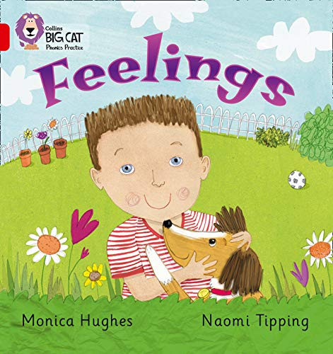 9780007235926: Feelings (Collins Big Cat Phonics)
