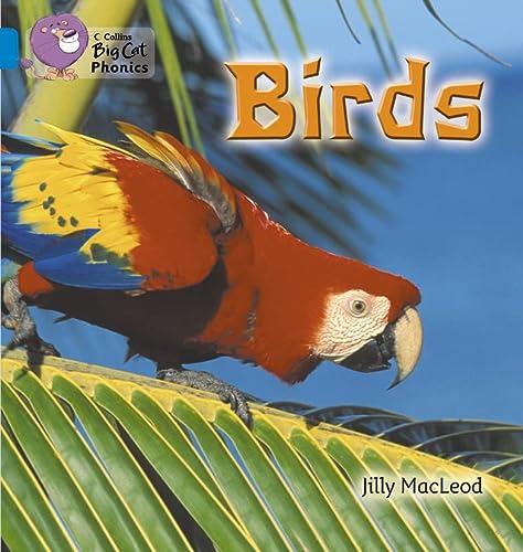 9780007236046: Birds (Collins Big Cat Phonics)