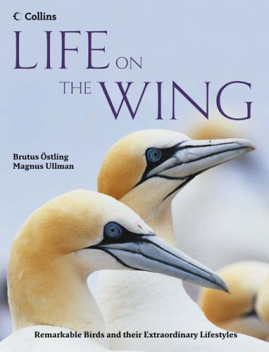 9780007240470: Life on the Wing: Remarkable Birds and their Extraordinary Lives