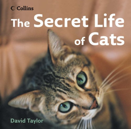 9780007244751: The Secret Life of Cats