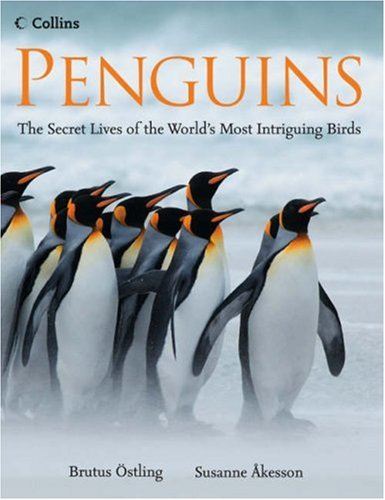 9780007247448: Penguins: The Secret Lives of the World's Most Intriguing Birds