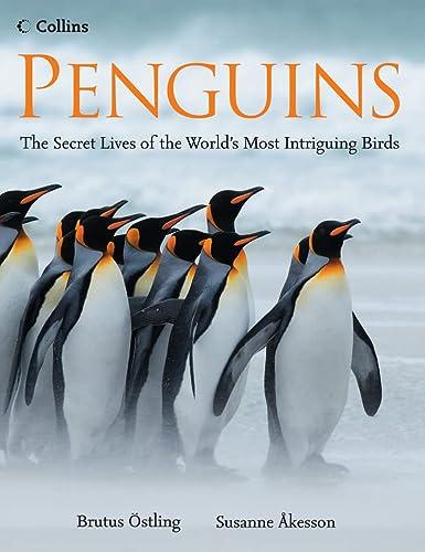 9780007247448: Penguins