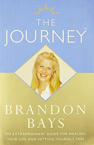 9780007258239: The Journey