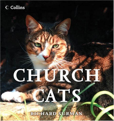 9780007261611: Church Cats