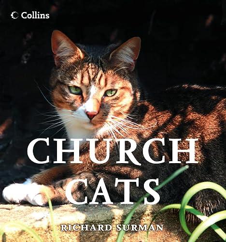 9780007261611: Church Cats