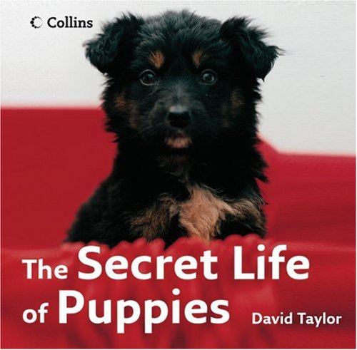 9780007263615: The Secret Life of Puppies