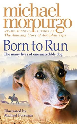 9780007265626: Born to Run