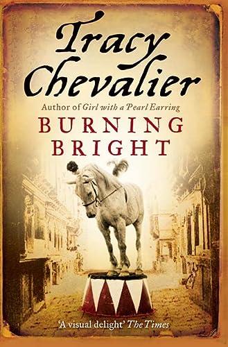 9780007269341: Burning Bright