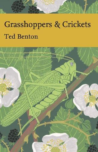 Grasshoppers and Crickets (Hardback): Ted Benton