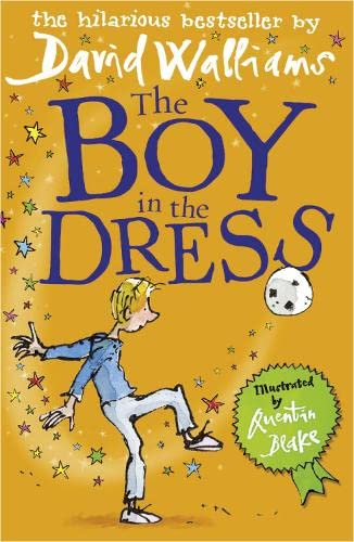 9780007279036: Boy in the Dress
