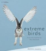 9780007279234: Extreme Birds