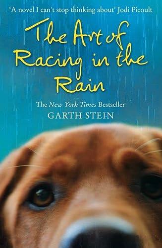 9780007281190: The Art of Racing in the Rain