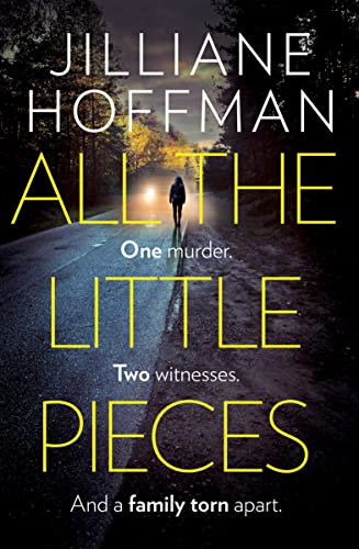 9780007311729: All the Little Pieces