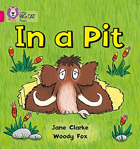 9780007334889: In a Pit (Collins Big Cat Phonics)