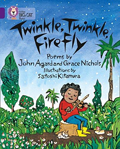 9780007336142: Collins Big Cat - Twinkle, Twinkle, Firefly: Band 08/Purple