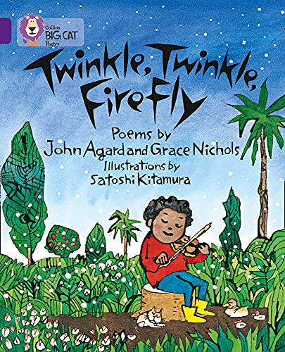 Twinkle, Twinkle, Firefly: Band 08/Purple (Collins Big: Collins Big Cat