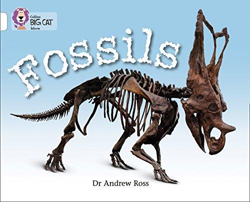 9780007336197: Fossils (Collins Big Cat)