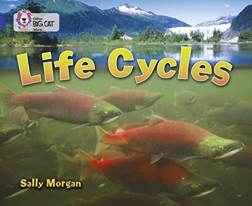 9780007336401: Life Cycles (Collins Big Cat)